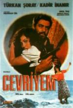 Cevriyem (1978) afişi