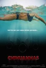 Chihuanhas (2011) afişi
