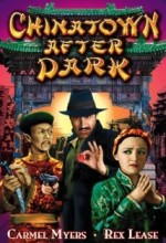 Chinatown After Dark (1931) afişi