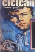 Cici Can (1963) afişi