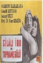 Cilalı ibo Ve Tophane Gülü (1960) afişi