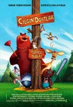 Çılgın Dostlar (2006) afişi