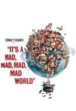 Çılgın Dünya (1963) afişi