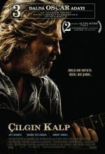 Çılgın Kalp (2009) afişi