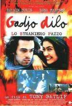Çılgın Yabancı (1997) afişi