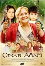 Çınar Ağacı (2011) afişi