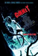 Cinnet (2007) afişi