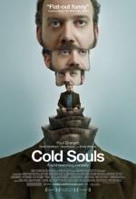 Dondurulmuş Ruhlar