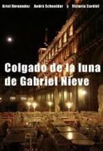 Colgado De La Luna (2005) afişi