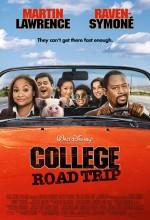 College Road Trip (2008) afişi