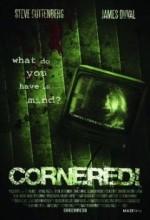 Cornered! (2009) afişi