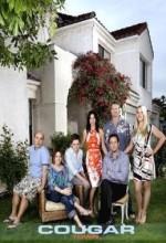 Cougar Town (2010) afişi