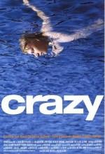 Crazy (2000) afişi