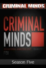 Criminal Minds (2009) afişi