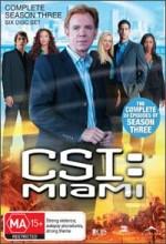 Csı: Miami (2004) afişi