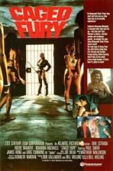 Gizli Öfke (1990) afişi