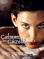 Çalınmış Güzellik (1996) afişi