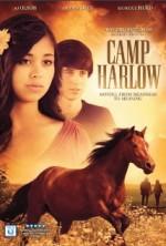 Camp Harlow (2014) afişi