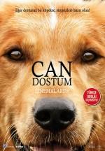 Can Dostum (2017) afişi