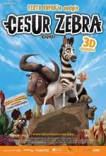 Cesur Zebra (2013) afişi