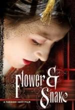 Çiçek Ve Yılan (2004) afişi