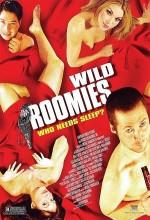 Çılgın Arkadaşlar (2004) afişi