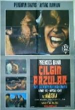 Çılgın Arzular (1974) afişi