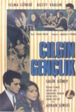 Çılgın Gençlik (1966) afişi