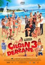 Çılgın Dersane 3 (2014) afişi