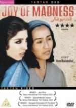 Çılgınlığın Keyfi (2003) afişi