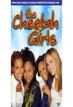 Çita Kızlar 1 (2003) afişi