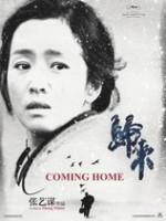 Yuvaya Dönüş (2014) afişi