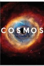 Cosmos: Bir Uzay Serüveni Sezon 1 (2014) afişi