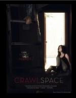 Crawlspace (2013) afişi