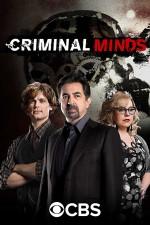 Criminal Minds Sezon 13 (2018) afişi