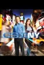 CSI: NY Sezon 9 (2013) afişi