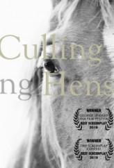 Culling Hens (2013) afişi