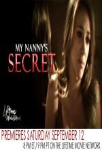 Dadımın Sırrı (2009) afişi