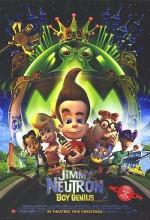 Dahi Çocuk (2001) afişi