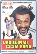 Darıldın  Mı Cicim Bana (1970) afişi