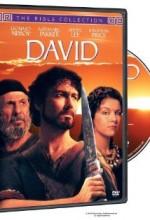 David (1997) afişi
