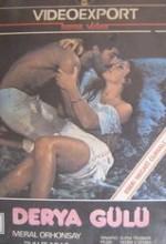 Derya Gülü (1979) afişi