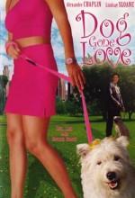 Dog Gone Love (2004) afişi