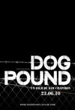 Dog Pound (2010) afişi
