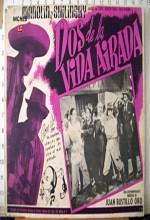 Dos De La Vida Airada (1948) afişi