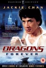Sonsuz Ejderler (1988) afişi