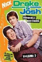 Drake&josh (2004) afişi