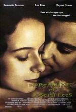 Dreaming Of Joseph Lees (1999) afişi