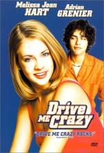 Drive Me Crazy (1999) afişi