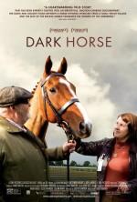 Dark Horse (2015) afişi